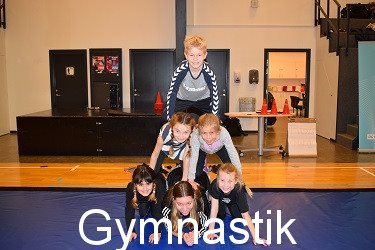 voksen stævne gymnastik 2018